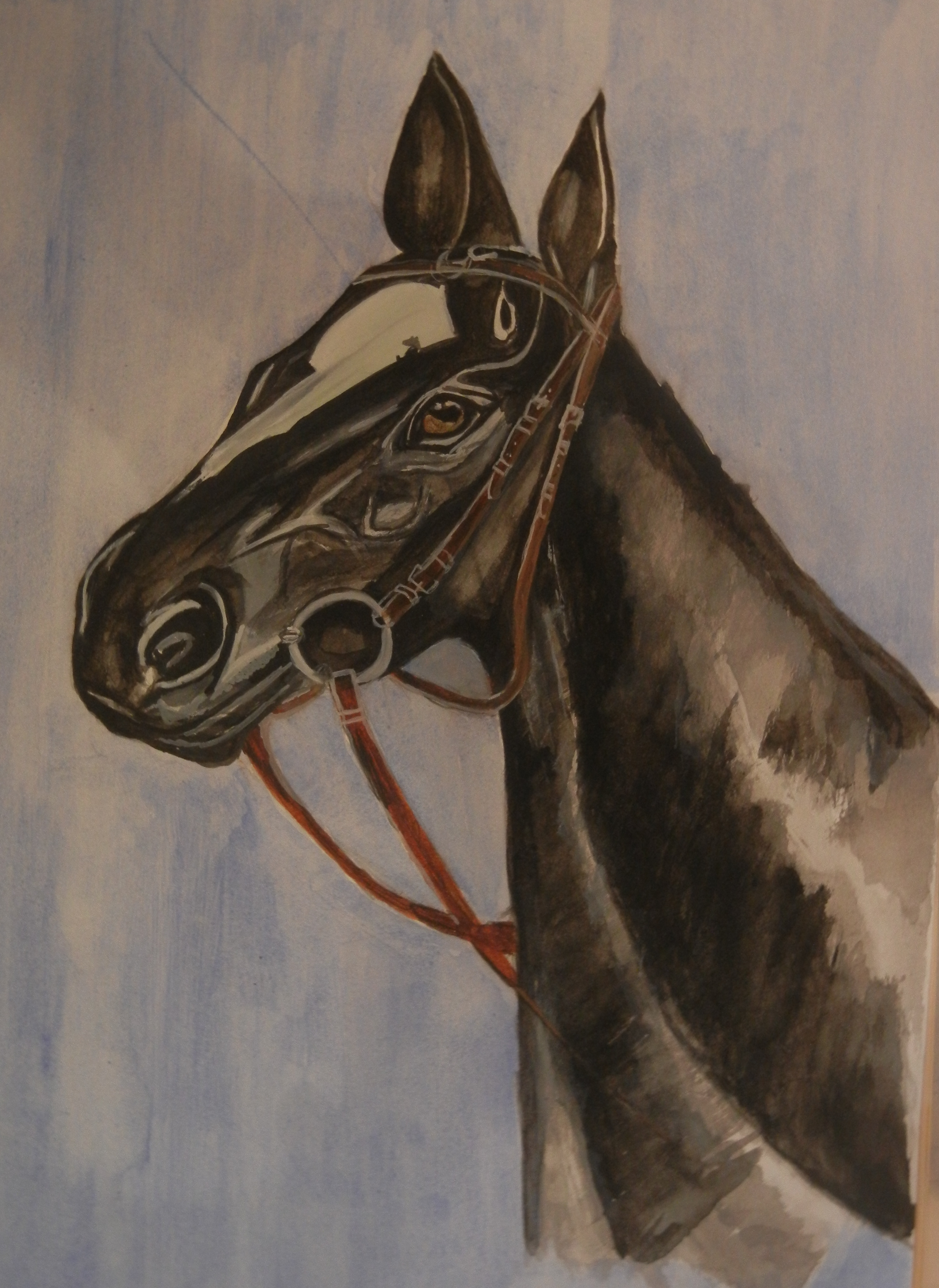 Horse in Watercolour